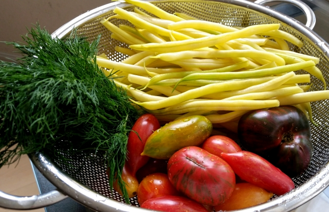 Yellow wax beans, heirloom tomatoes, dill